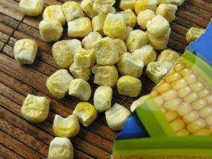 sensible-corn